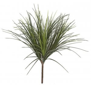 "26"" Outdoor Onion Grass  - Tutone Green - 23"" Width - Bare Stem"