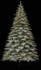 Medium flocked lockhart fir trees | 7.5 ft, 9 ft, 12 ft. Tall